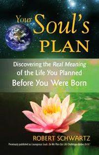 Your Souls Plan Robert Schwartz